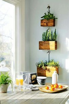 Love the herb boxes