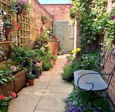 Small Courtyard Gardens, Small Courtyards, Small Backyard Gardens, Small Space Gardening, Small Gardens, Small Garden Bench, Small Garden Design, Small Patio, Garden Benches