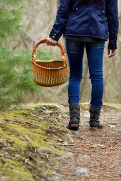 Learn To Collect And Use Wild Plants, Plus Botany Basics: Online Course #ad #wild #botany #plantbased #plants #plantlady #crazyplantlady Bushcraft Skills, Bushcraft Camping, Edible Wild Plants, Plant Identification, Parts Of A Plant, Plant Drawing, Wild Edibles, Medicinal Herbs, Healing Herbs
