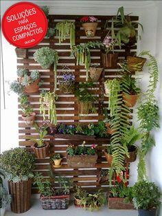 Uma estrutura de madeira presa à parede se transforma em uma base para você pendurar vários vasos e, assim, criar um lindo jardim vertical.