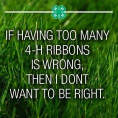 Amen!! It is addicting to win ribbons. Once you start you never want to stop.