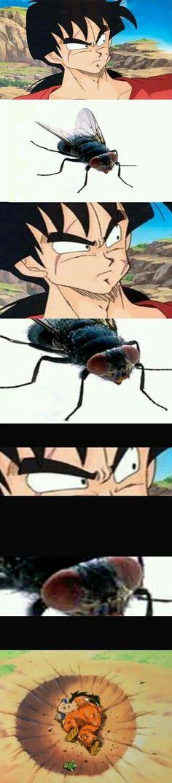 Se o Yancha não consegue nem matar uma mosca imagine se for para lutar com um inimigo extremamente poderoso