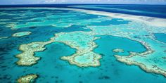 Saving The Great Barrier Reef Will Cost $6.3 Billion