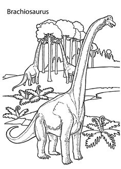 Brachiosaurus Realistic Dinosaurs Coloring Pages For Kids Printable Free