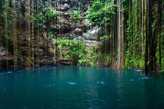 Ik-Kil Cenote near Chichen Itza - Mexico   17 Stunning Natural Wonders You Didn't Know Existed