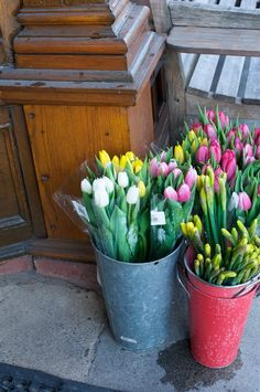 French market flower buckets filled with tulips!  #TERRAINsignsofspring