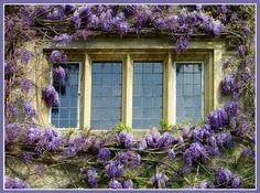 Imagine a warm summer breeze through the open window on a breezy summer evening...