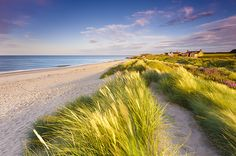 england beach, oh my! Beach Picnic, Summer Picnic, I Love The Beach, Company Picnic, Beautiful Beaches, Beautiful Landscapes, Seaside, Countryside, Costa