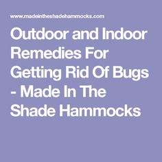 Outdoor and Indoor Remedies For Getting Rid Of Bugs - Made In The Shade Hammocks