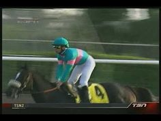 Zenyatta's amazing historical win in the 2009 Breeder's Cup Classic. First and only filly to win it.  I love this....