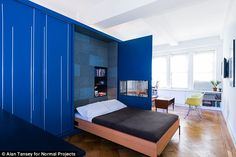 Bare necessities: The large blue box contains a full-size Murphy bed hidden behind a cabinet door, and desk