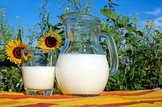 You may have come across the word kefir and wondered what it is, especially if you are not a health conscious individual. Well, kefir is a uniquely prepared dairy product . Read Amazing Benefits of Kefir Delicious Kefir Recipes) Dieta Dash, Tire Lait, Hcg Diet Recipes, Mince Recipes, Smoothie Recipes, Sem Lactose, Milk Cans, Plantation, Protein Shakes