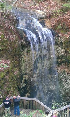 Looking forward to my next trip, Falling Waters State Park my next stop, visiting the 73-foot (22 m) waterfall, highest waterfall in Florida.  http://travels.luizcentenaro.com/
