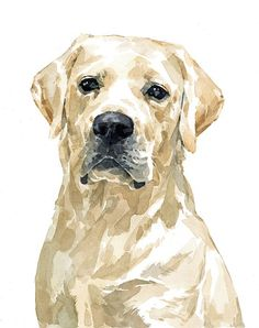 Labrador Dog Portrait, Lab Original Watercolor custom pet portrait - Custom Pet Portrait – Original watercolor painting of your Lab or other dog Realistic water - Animal Paintings, Animal Drawings, Indian Paintings, Watercolor Animals, Watercolor Paintings, Watercolor Trees, Watercolor Landscape, Abstract Paintings, White Labrador