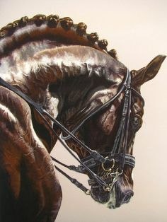 Sporting Art - Acrylic Horse Portrait Paintings Pictures
