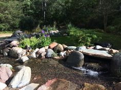 Our new stream and pondless water fall system that replaced our old pond system.  So much easier to take care of and love having a long stream with small waterfalls in it.  The sound is magical.