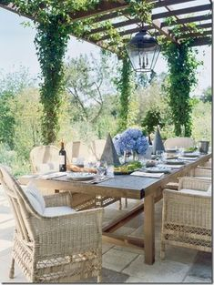 Downstairs dining.  Vines, long table.