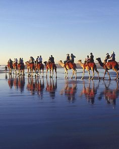 A memorable wedding - camels in Broome, Australia. On the beach. North west. Ride the camels after the vowels, into the sunset on the beach. YES