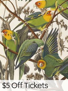 Philadelphia Museum of Art - Exhibitions - Audubon to Warhol: The Art of American Still Life