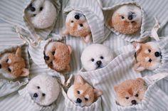 These are Pom Pom animals. Just too cute ! Pom Pom Animals, Pom Pom Crafts, Cute Bears, Knitted Dolls, New Hobbies, Origami, Decoupage, Whimsical, Elephant