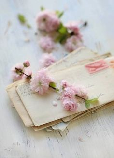 New flowers photography still life ana rosa ideas Old Letters, Writing Letters, Handwritten Letters, Foto Art, Vintage Lettering, Arte Floral, Jolie Photo, Vintage Love, Vintage Vibes