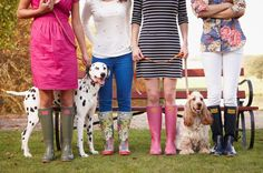 this is such a cute picture. Dogs. Dalmatian. Cocker spaniel. Boots. Clothes. Fashion. Pants. Rain. Grass. Green. Blue. Orange. Colorful. Happy. orange. Red. Pink. Yellow. Sun. Shine. Love. Statement.