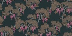 Wisteria (89/10042) - Cole & Son Wallpapers -  rich coloured design reminiscent of hand-painted lacquer work showing beautifully detailed Wisteria blooms. Shown here in  pink against rich gloss black. Paste the wall. Please request sample for true colour match.