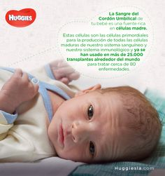 ¿Te gustaría preservar las celulas madre cuando nazca tu bebé? http://escuelahuggies.com/Panzalogia/Recoleccion-de-sangre-del-cordon.aspx