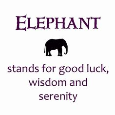 Stands for Good Luck, Wisdom & Serenity My reasons for an elephant tattoo Elephant Love, Elephant Art, Elephant Tattoos, Elephant Meaning, Elephant Quotes, Elephant Stuff, Elephant Parade, African Elephant, Elephant Spirit Animal
