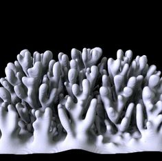 Branching structures emerge during supercooled crystal growth due to the interplay of phase change and temperature as liquid becomes solid. This project explores 2D and 3D simulations of dendritic solidification.  Laplacian growth involves a structure which expands at a rate proportional to the gradient of a laplacian field. Under the right circumstances, this leads to instabilities causing intricate, fractal branching structure to emerge.  more information at: http://n-e-r-v-o-u-s.com/p...