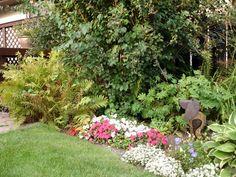 Tips over permacultuur 'hedgerow' Brede haag met meerdere planten als afscheiding.
