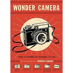 Cavallini Wonder Camera Wrapping Paper