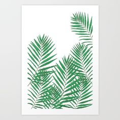 Watercolor painting:  fern on white background<br/> <br/> <br/> Fern, green, group, nature...