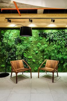 Tropical Home Upgrade – Indoor Vertical Garden and Living Wall Vertical Garden Wall, Vertical Gardens, Moss Wall Art, Garden Solutions, Garden Living, Plant Wall, Plant Box, Tropical Houses, Indoor Garden