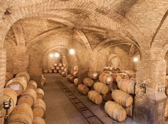 Wines of Chile, 1 Week Stay Minimum. Caves, Oh The Places You'll Go, Cool Places To Visit, Grape Harvest Season, Grape Vine Trellis, Chilean Wine, Old Farm Houses, Wine Country, Wine Recipes