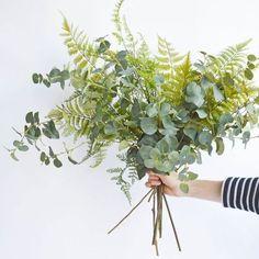 eucalyptus and fern wedding bouquet