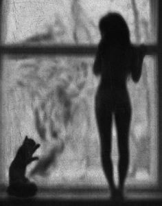 By Alex Howitt
