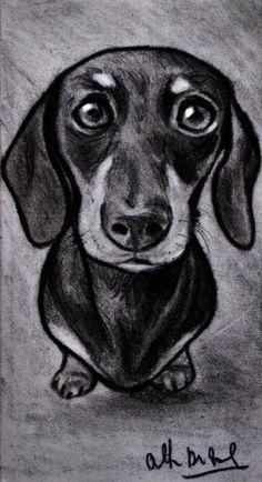 Schizzo disegno ritratto cane bassotto matita su cartoncino 19x10,5 cm disegnato a mano ,il tenero e intenso sguardo che denota la grande intelligenza di questa razza. Spedizione con posta 1 prioritaria