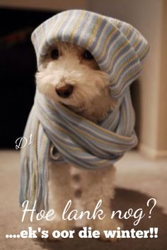 Ek's oor die winter...
