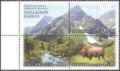 Russia-2006-Mountains-Bison-River-Forest-Animals-Nature-Wildlife-3v-blk-n29988