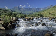 The Tugela River is the largest river in KwaZulu-Natal Province, South Africa. It is one of the most important rivers of the country. The river originates in the Drakensberg Mountains, Mont-aux-Sources, and plunges 947 metres down the Tugela Falls. Nigel Dennis Wildlife Photography : South Africa