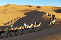 #TrekkingInMorocco is amazing places to visit, the country truly forms a great place to go on a holiday with friends and family. http://www.moroccotourguide.org/