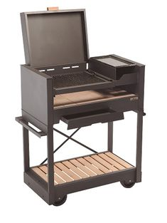 Backyard Barbeque, Barbecue Grill, Grilling, Parilla Grill, Parrilla Exterior, Grill Stand, Fire Pit Cooking, Metal Grill, Outdoor Stove