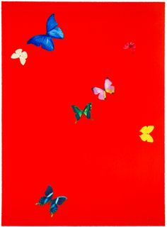 31 Best Damien Hirst Butterfly Prints Images Damien Hirst Butterfly Damien Hirst Hirst