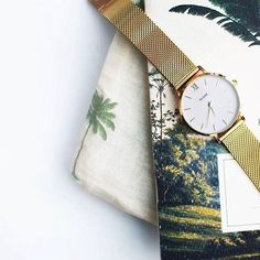 S P O T T E D // Weekend is coming, get that to do list done! ✍✔️ #Àla #alacollection #ticktock #palmtree #notebook #todolist #weekendiscoming #Clusewatches Regram by @justlikesushi