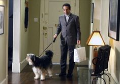 Mr Monk and the dog- this episode is so sad. Detective Monk, Detective Series, Best Tv Shows, Best Shows Ever, Favorite Tv Shows, Monk Serie, Monk Pictures, Monk Tv Show, Adrian Monk