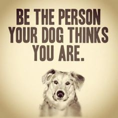 Your dog thinks