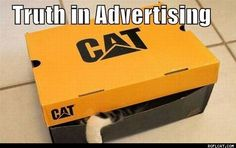 This would make the FTC happy. #cats #advertising
