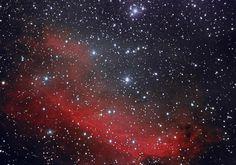 #Astronomy: Prawn nebula in #Scorpius | via @SkyAndTelescope