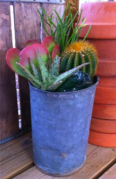 #pottery #planters #containers #pots.